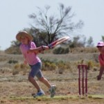 pinkstumps-cricket4