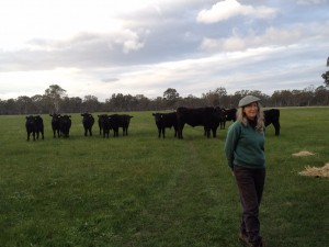 Trish Stewart & their Biodynamic Wagyu