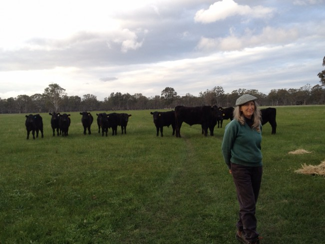 Amazing Wagyu – from the paddock to the plate