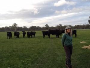 Trish Stewart & their Biodynamic Wagyu